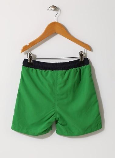 North Of Navy North Of Navy Erkek Çocuk Yeşil Şort Mayo Yeşil
